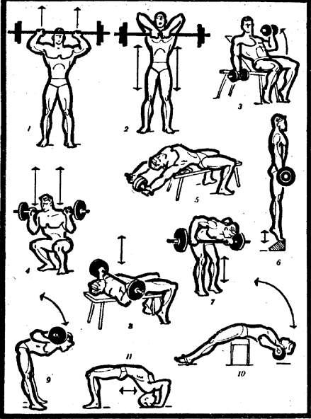 купить упражнения для расширения грудной клетки достигается